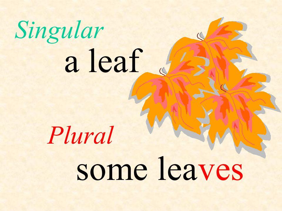 Singular a leaf Plural some lea ves