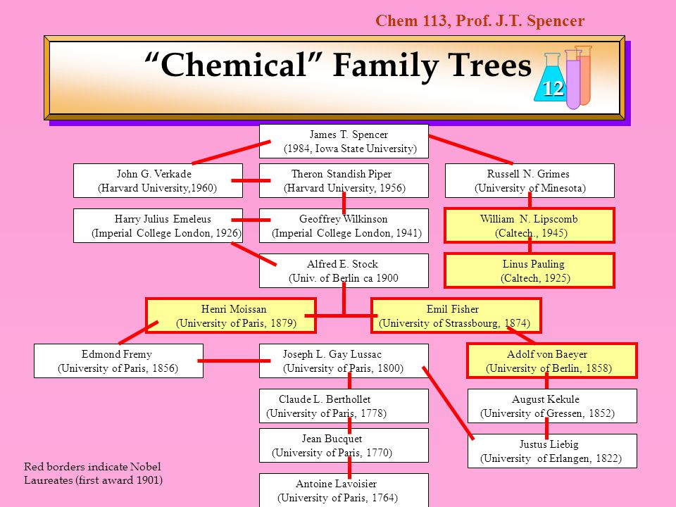 Chemical Family Trees