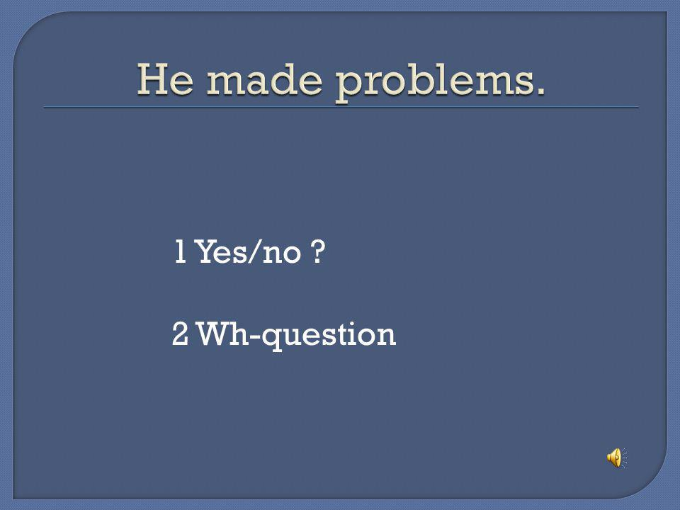 He made problems. 1 Yes/no 2 Wh-question