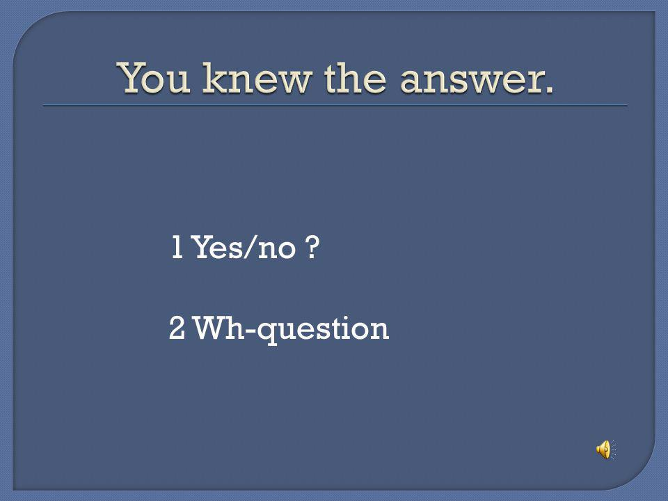 You knew the answer. 1 Yes/no 2 Wh-question