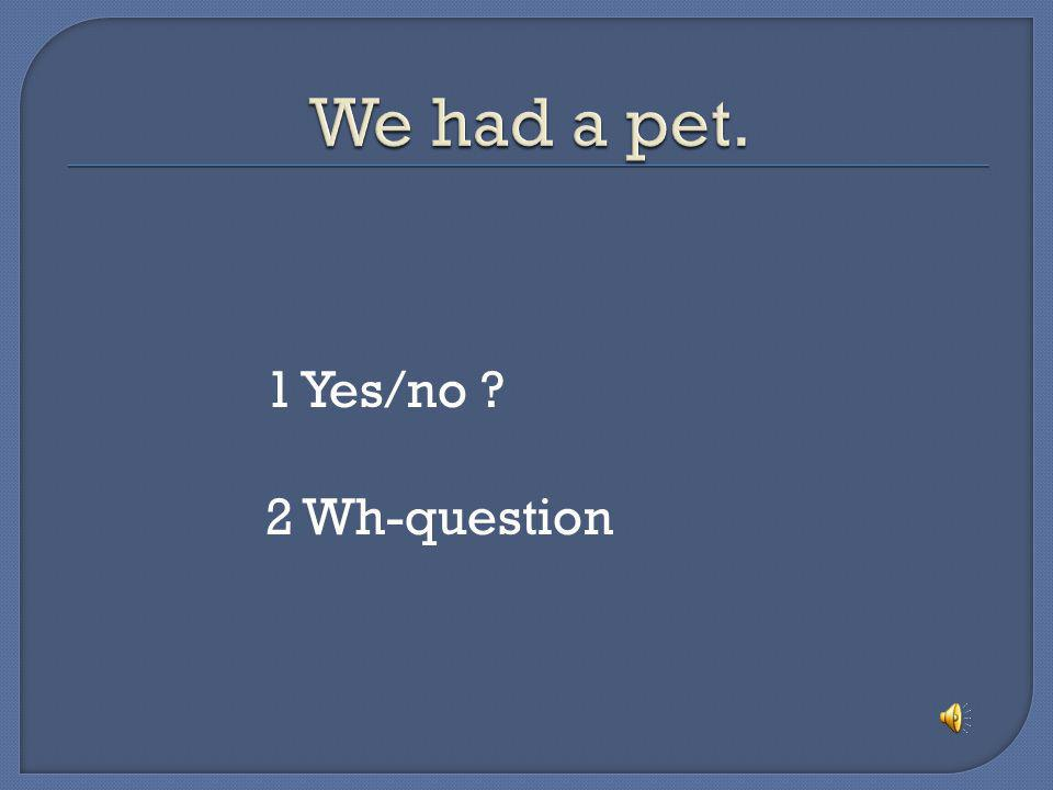 We had a pet. 1 Yes/no 2 Wh-question