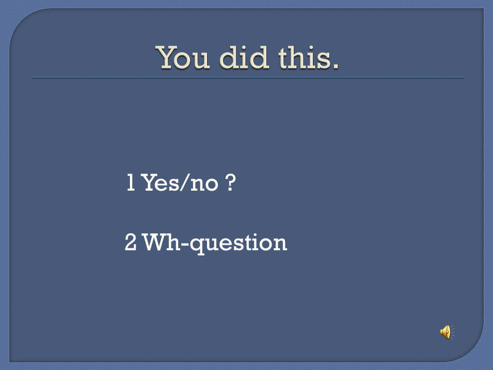 You did this. 1 Yes/no 2 Wh-question