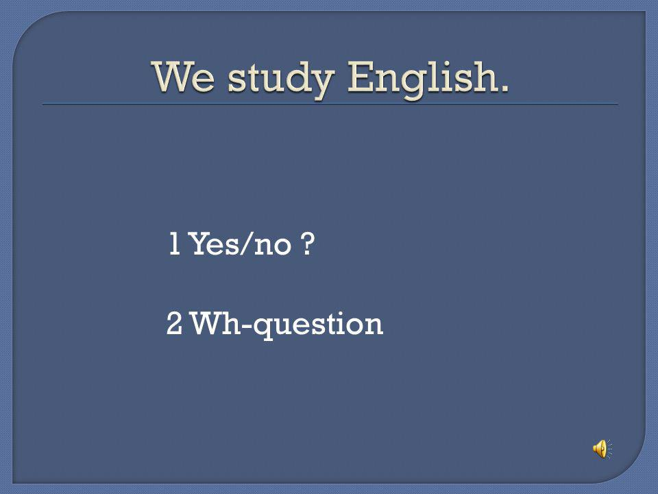 We study English. 1 Yes/no 2 Wh-question