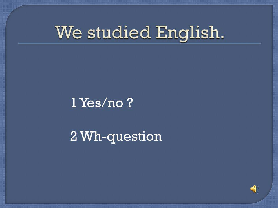 We studied English. 1 Yes/no 2 Wh-question