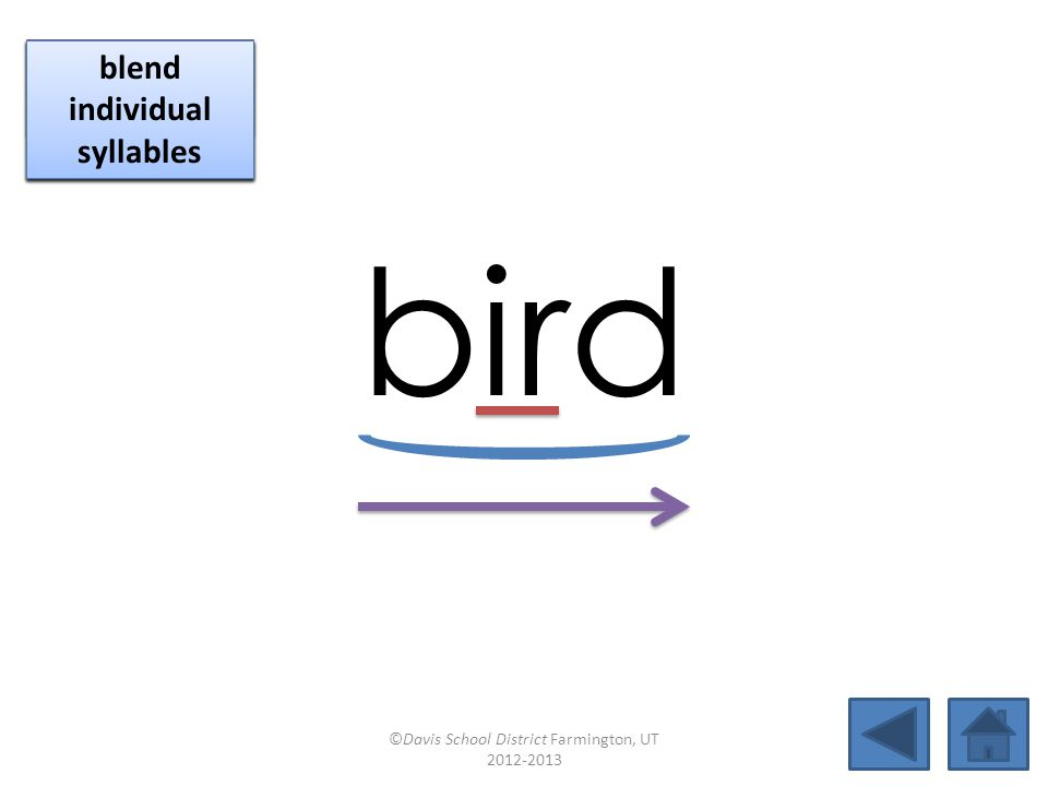 bird click per vowel identify vowel patterns