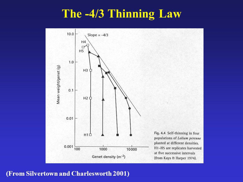 The -4/3 Thinning Law (From Silvertown and Charlesworth 2001)