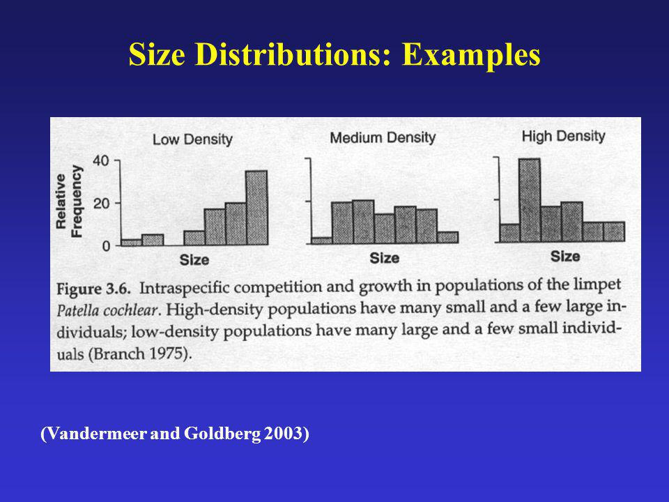 Size Distributions: Examples
