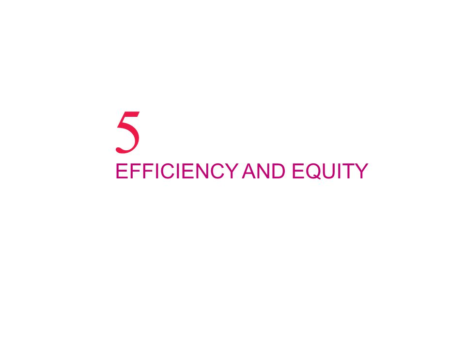 5 EFFICIENCY AND EQUITY