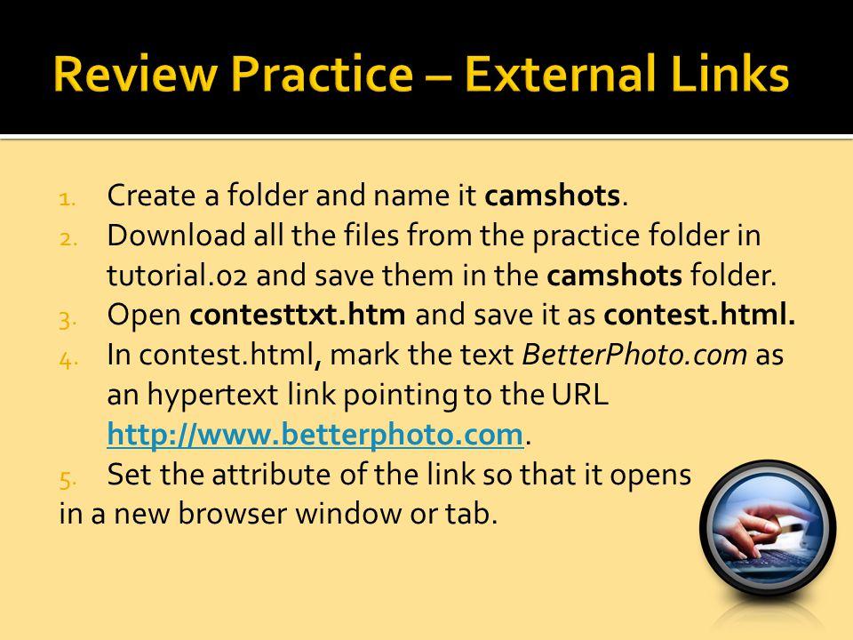 Review Practice – External Links