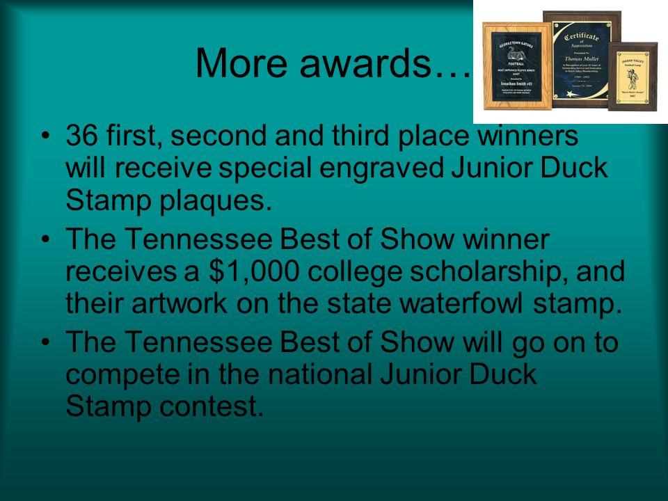 More awards… 36 first, second and third place winners will receive special engraved Junior Duck Stamp plaques.