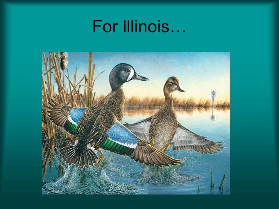 For Illinois…
