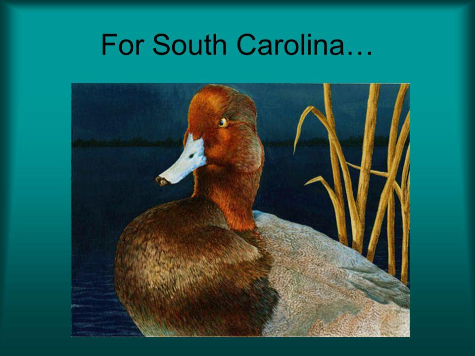 For South Carolina…