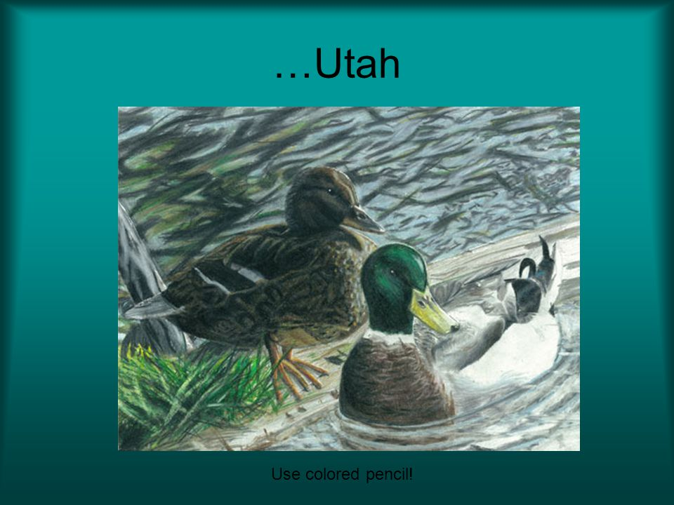 …Utah Use colored pencil!