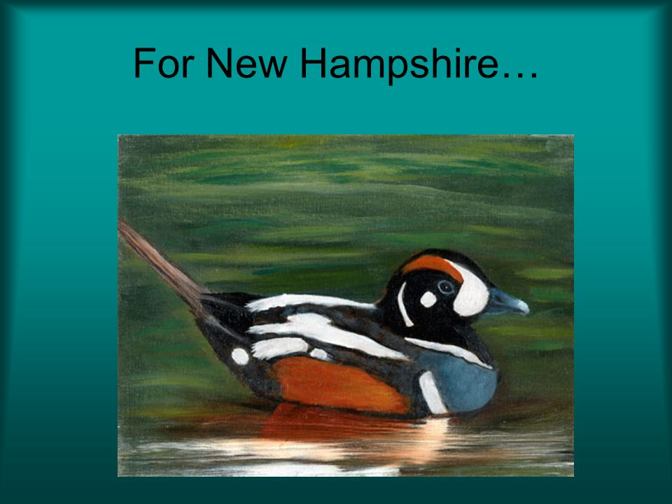 For New Hampshire…