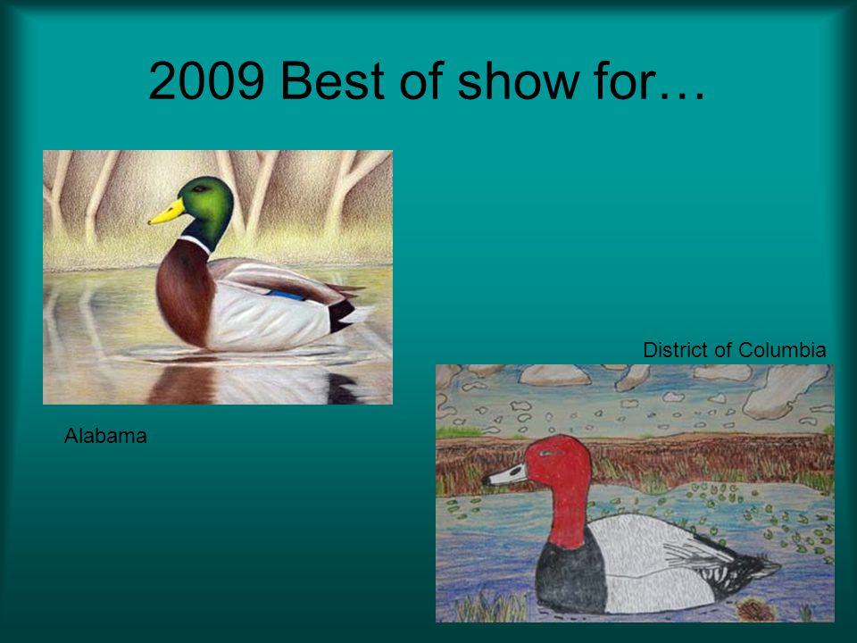2009 Best of show for… District of Columbia Alabama