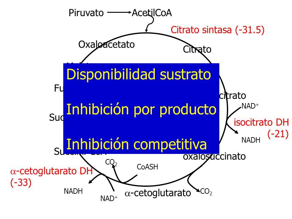 Disponibilidad sustrato Inhibición por producto Inhibición competitiva