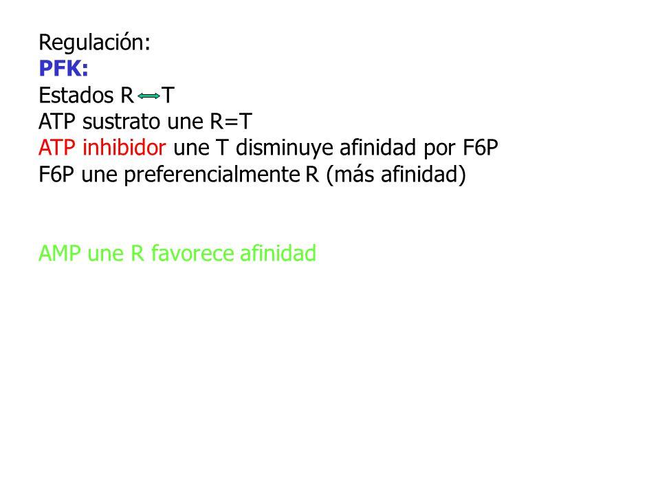 Regulación: PFK: Estados R T. ATP sustrato une R=T. ATP inhibidor une T disminuye afinidad por F6P.