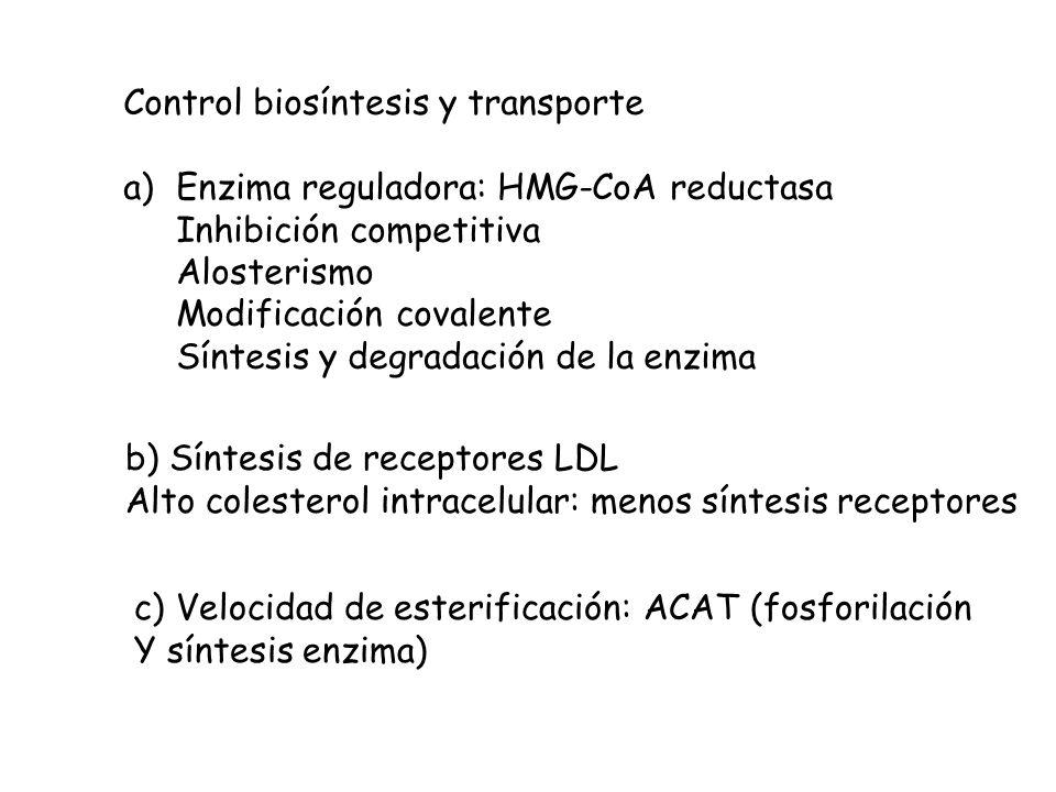 Control biosíntesis y transporte