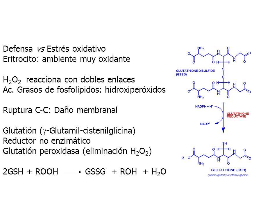 Defensa vs Estrés oxidativo