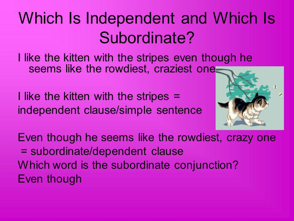 Which Is Independent and Which Is Subordinate