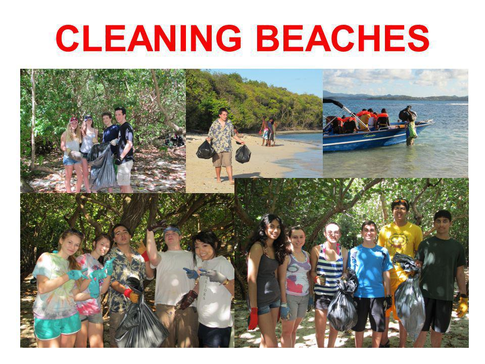 CLEANING BEACHES