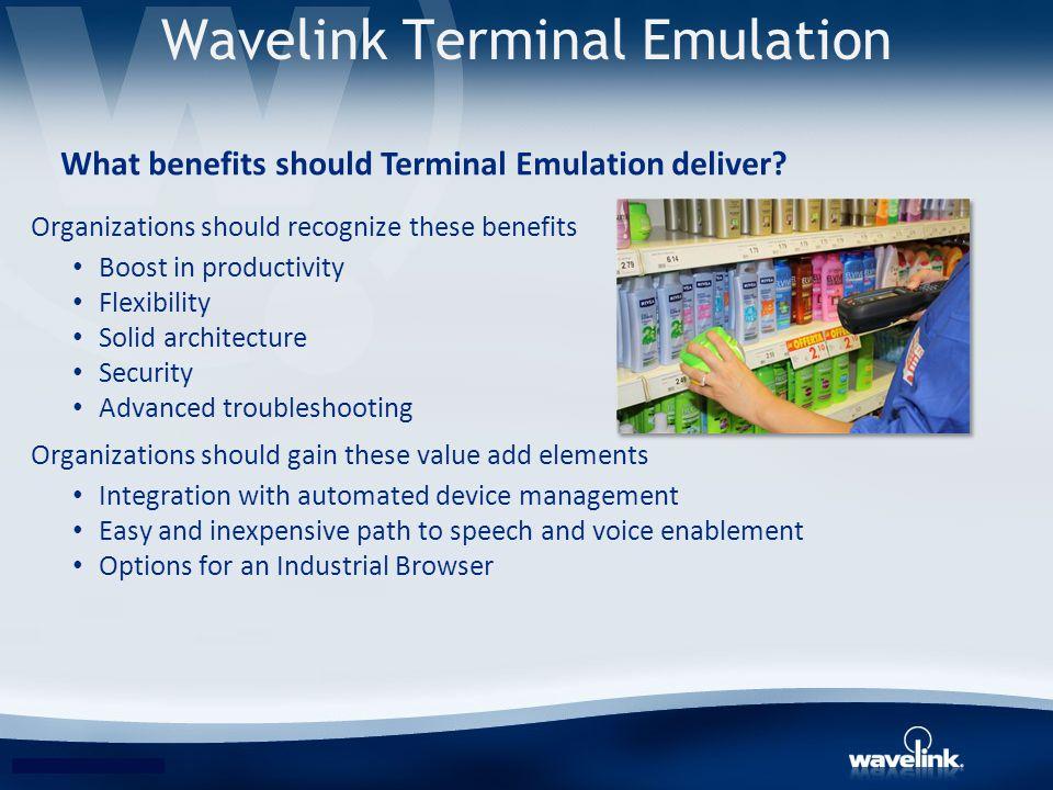 Wavelink Terminal Emulation