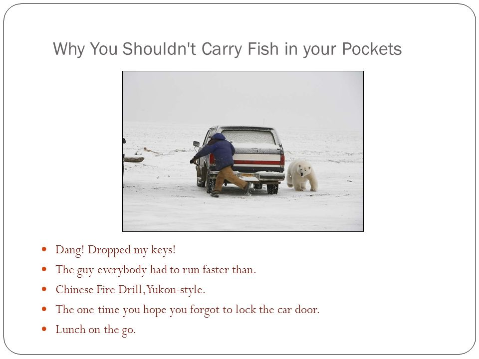 Why You Shouldn t Carry Fish in your Pockets