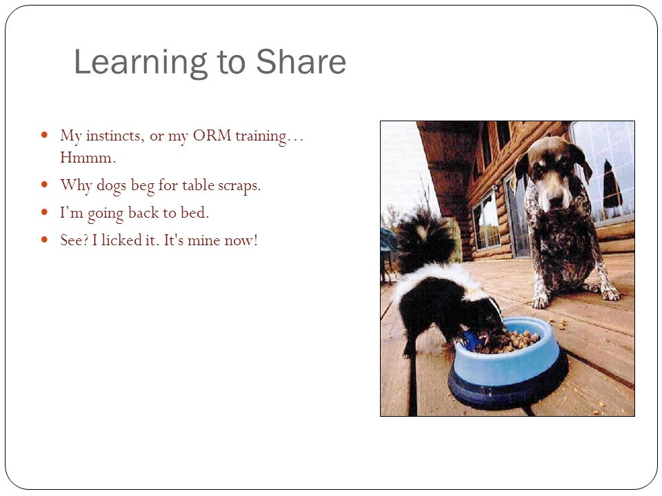 Learning to Share My instincts, or my ORM training… Hmmm.