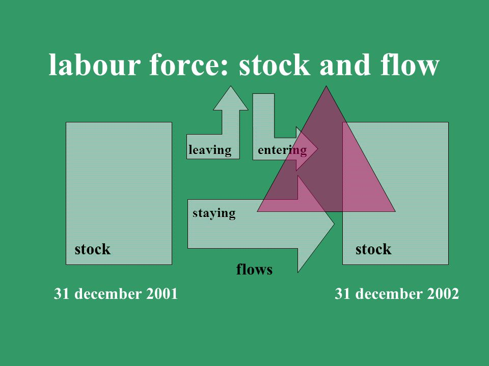 labour force: stock and flow