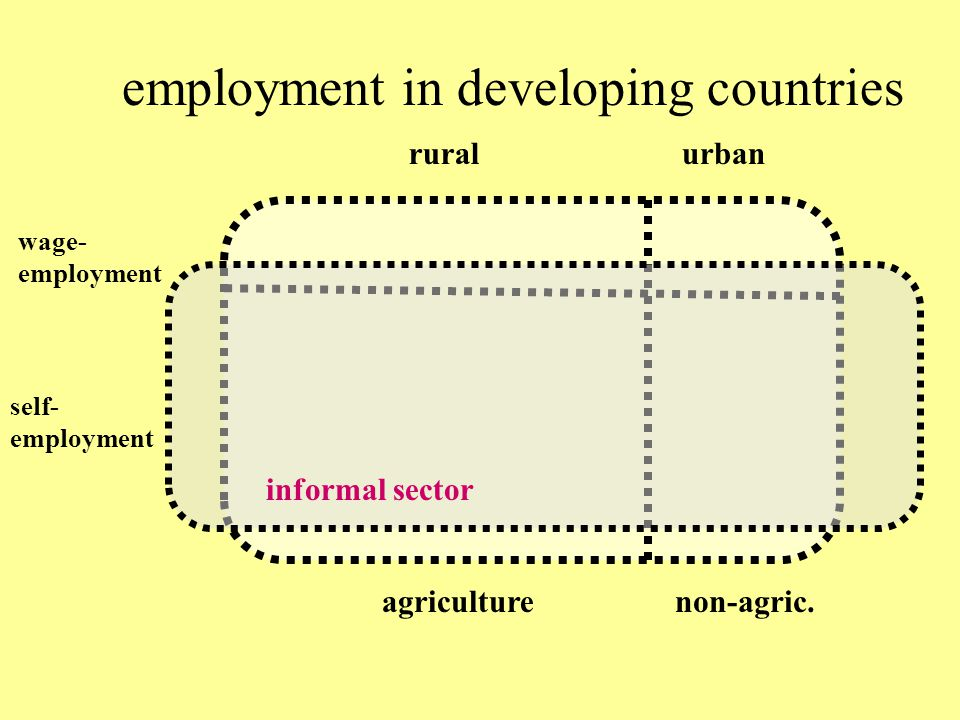 employment in developing countries