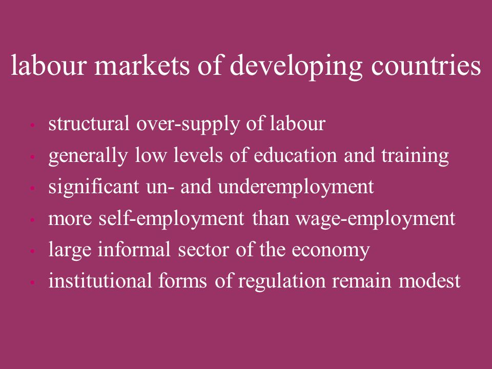labour markets of developing countries