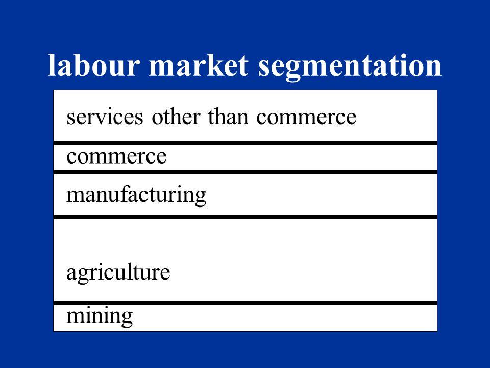 labour market segmentation
