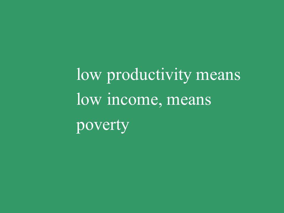 low productivity means