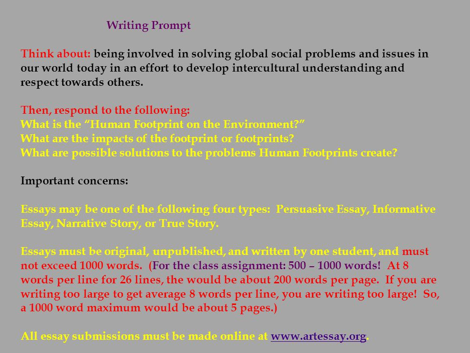 thematic essay on global issues