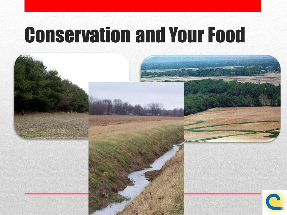 Conservation and Your Food