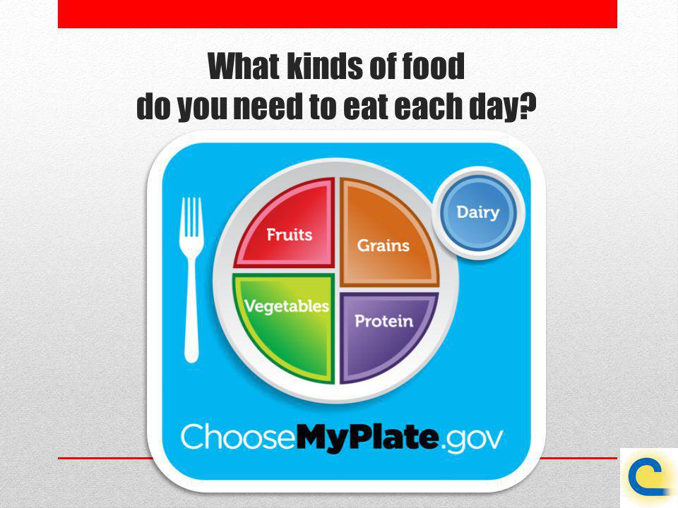 What kinds of food do you need to eat each day