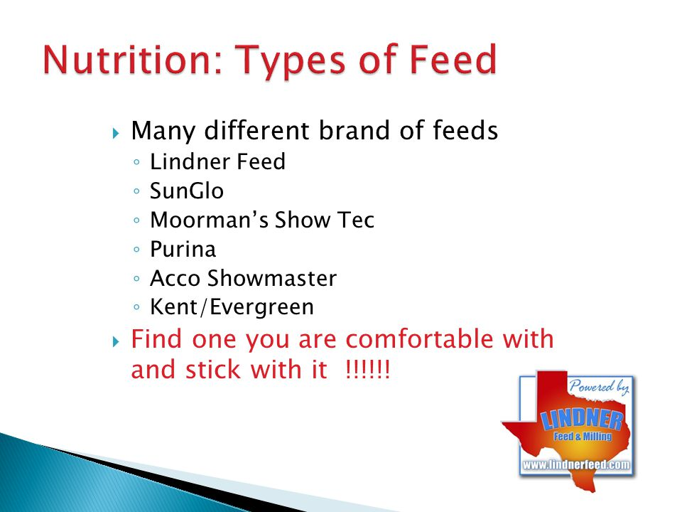 Nutrition: Types of Feed