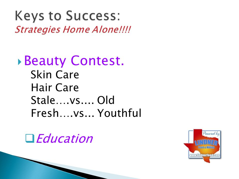 Keys to Success: Strategies Home Alone!!!!