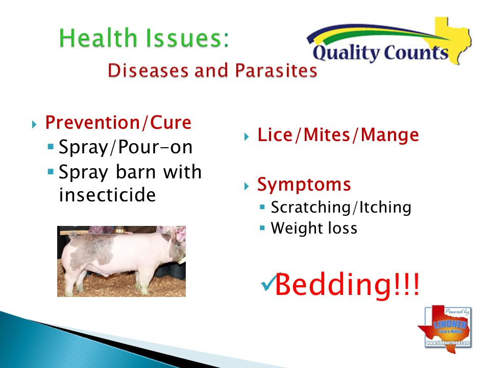 Health Issues: Diseases and Parasites