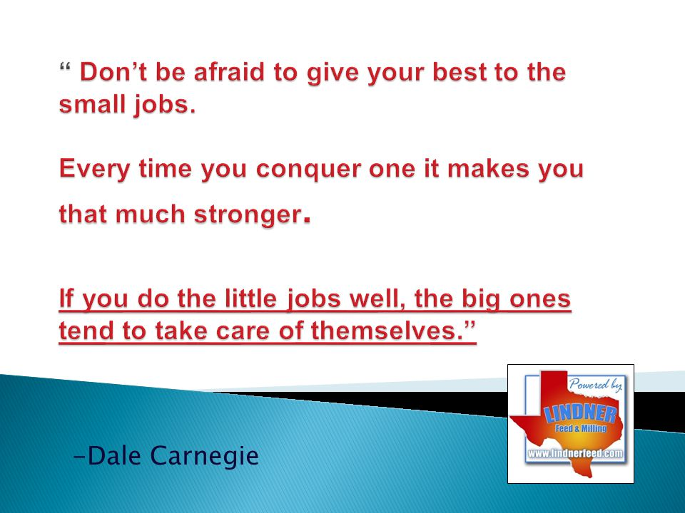 Don't be afraid to give your best to the small jobs