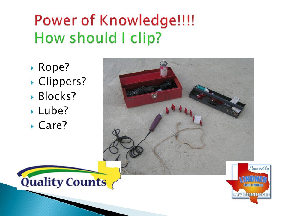 Power of Knowledge!!!! How should I clip