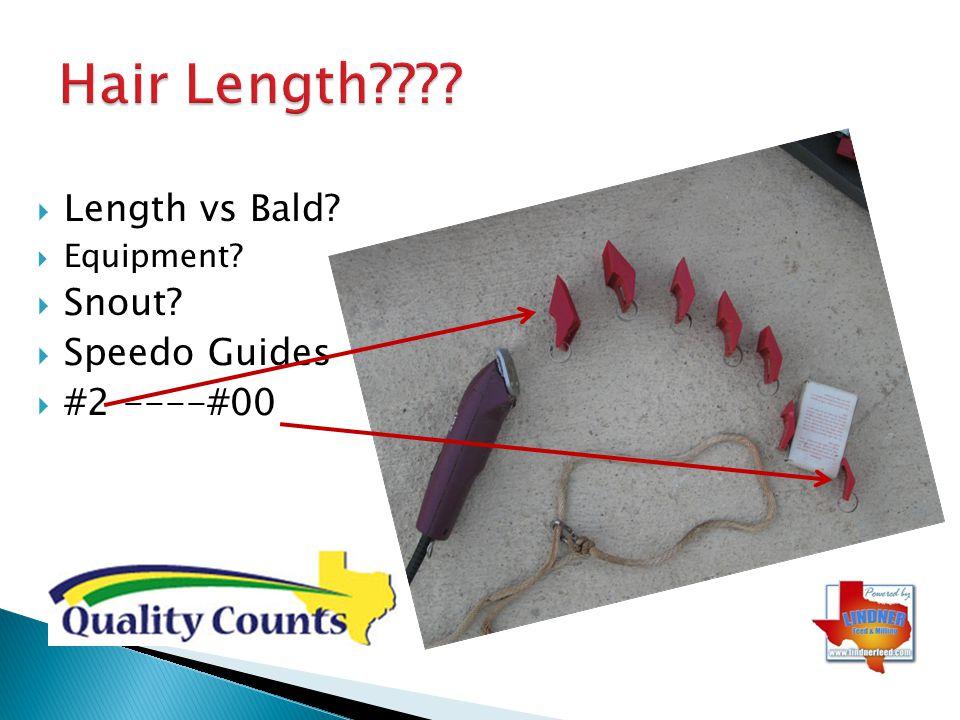 Hair Length Length vs Bald Snout Speedo Guides #2 ----#00