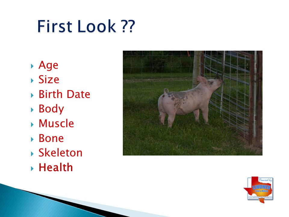 First Look Age Size Birth Date Body Muscle Bone Skeleton Health