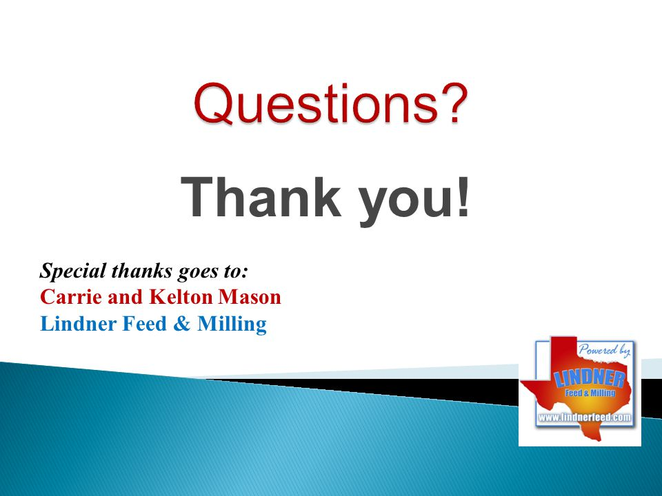Questions Thank you! Special thanks goes to: Carrie and Kelton Mason
