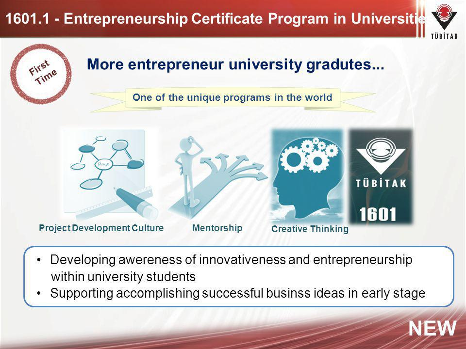 1601.1 - Entrepreneurship Certificate Program in Universities