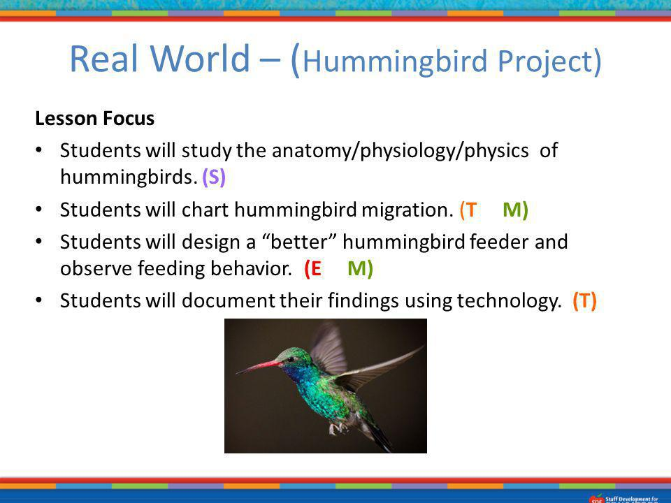 Real World – (Hummingbird Project)