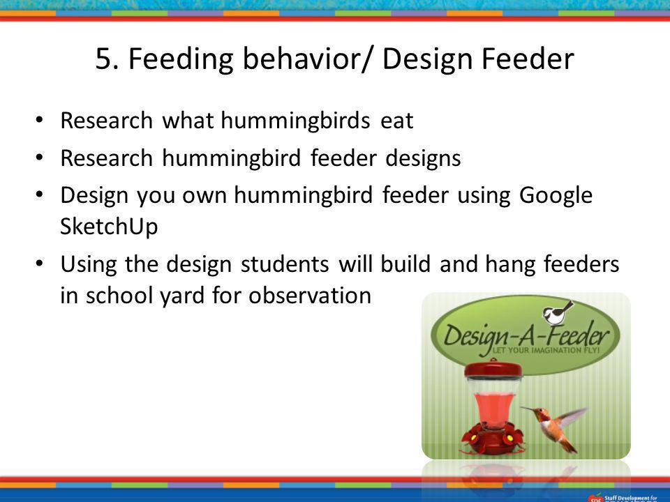 5. Feeding behavior/ Design Feeder