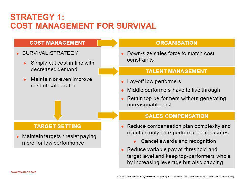 STRATEGY 1: COST MANAGEMENT FOR SURVIVAL