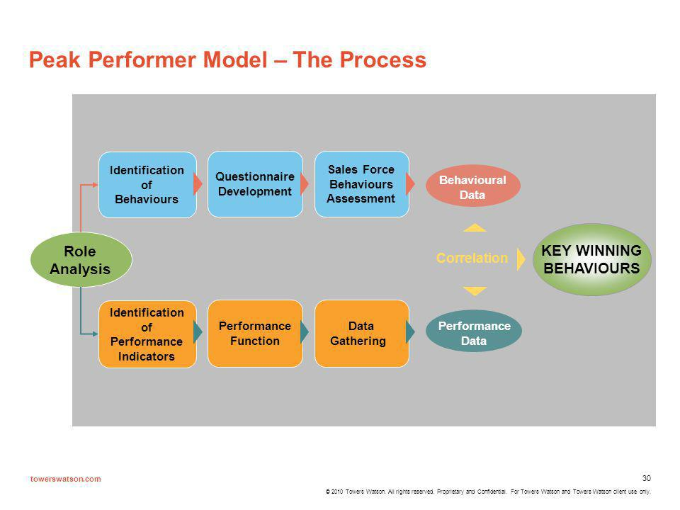 Peak Performer Model – The Process