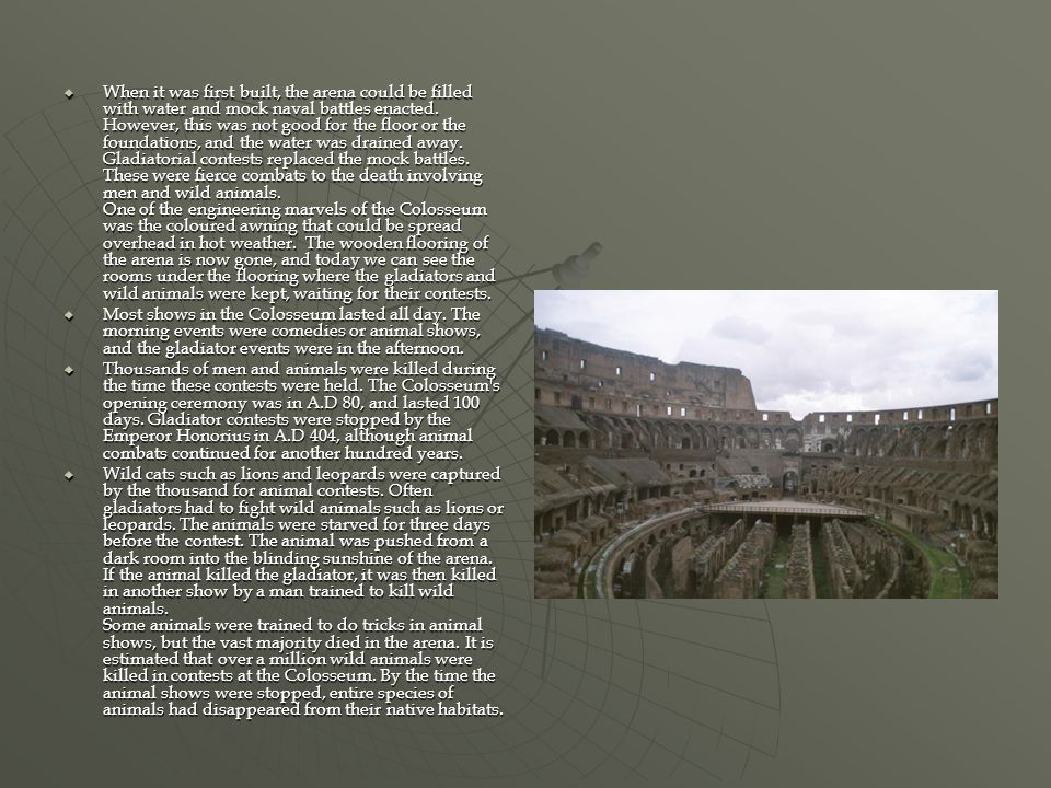 When it was first built, the arena could be filled with water and mock naval battles enacted. However, this was not good for the floor or the foundations, and the water was drained away. Gladiatorial contests replaced the mock battles. These were fierce combats to the death involving men and wild animals. One of the engineering marvels of the Colosseum was the coloured awning that could be spread overhead in hot weather. The wooden flooring of the arena is now gone, and today we can see the rooms under the flooring where the gladiators and wild animals were kept, waiting for their contests.